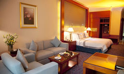 Grand Excelsior Al Barsha, United Arab Emirates / Dubai / Dubai City Area / Al Barsha